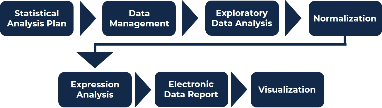 Diagram showing all the steps of the bioinformatic services: statistical analysis plan, data management, exploratory data analysis, normalization, expression analysis, electronic data report, visualization