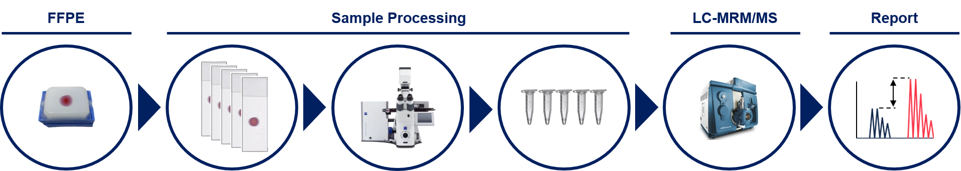 Image showing workflow from FFPE tissue, sample processing, LC-MS/MS, and finally data report
