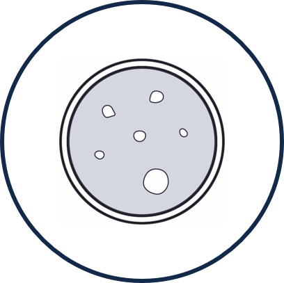 Icon for ELISpot - visual representation of a petri dish with spots with various sizes