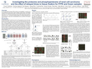 Investigating the proteome and phosphoproteome of renal cell carcinoma and the effect of delayed times to tissue fixation for FFPE and frozen samples